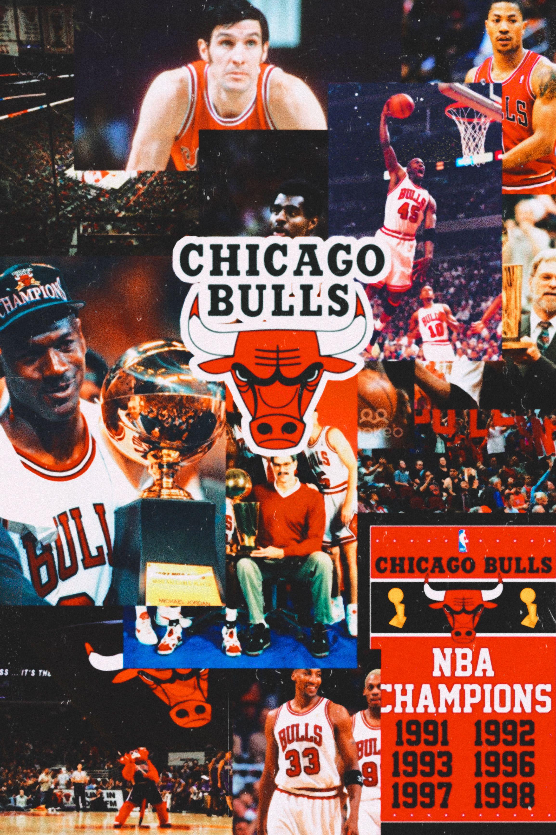 Chicago Bulls Chicago Bulls Chicago Nba Champions