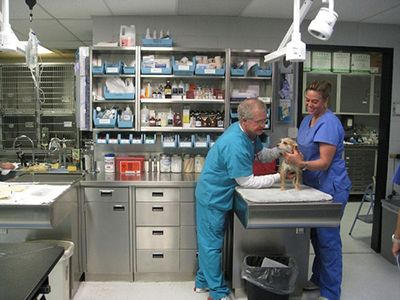 Take a Tour of our Amarillo, Texas Veterinary Hospital