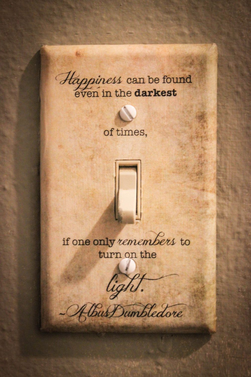 Happiness Quote Light Switch Plate *As seen on buzzfeed | Pinterest ...