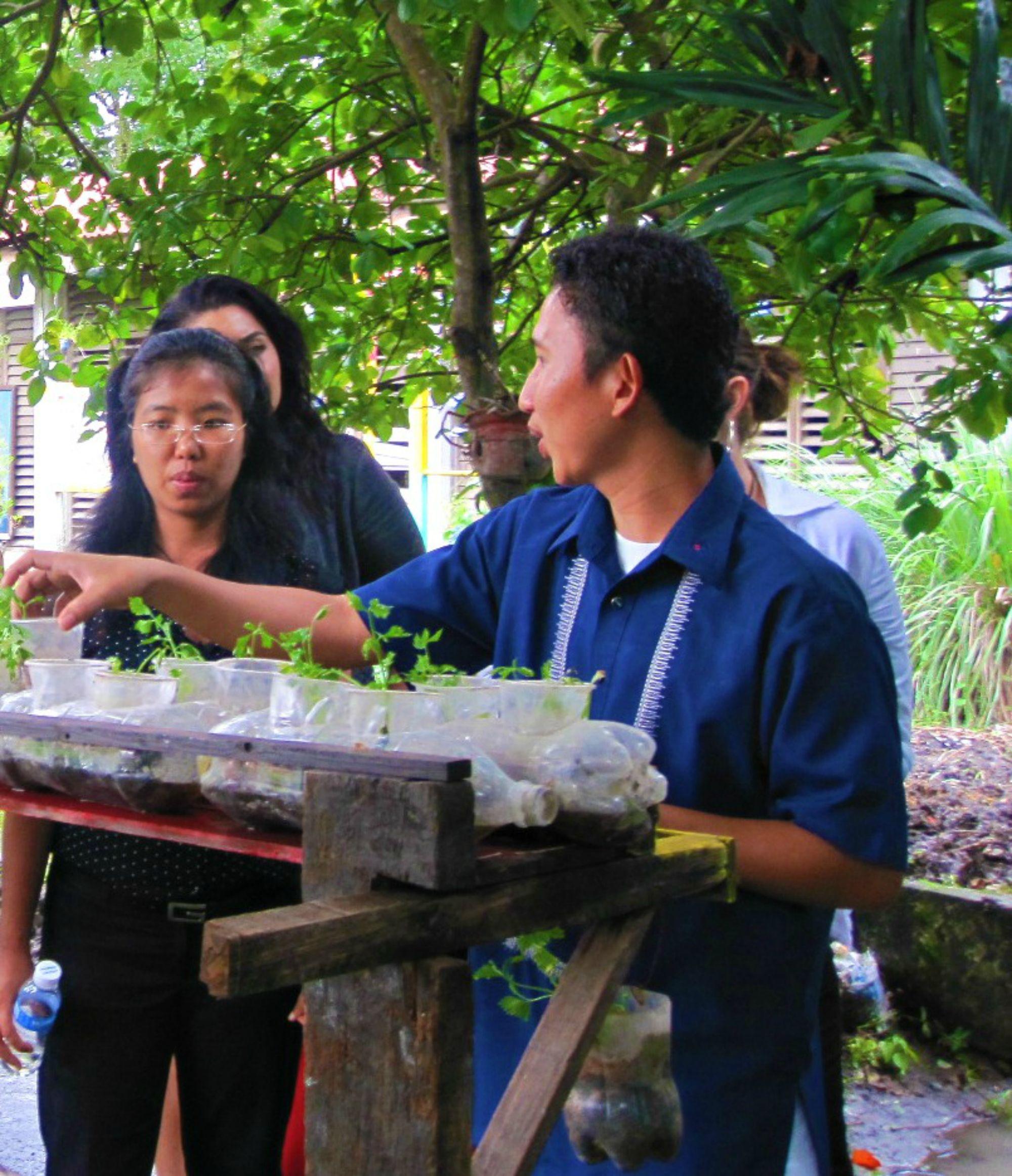 2608439c6f3ae64e61311e34cf8e2390 - Bio Intensive Gardening In The Philippines