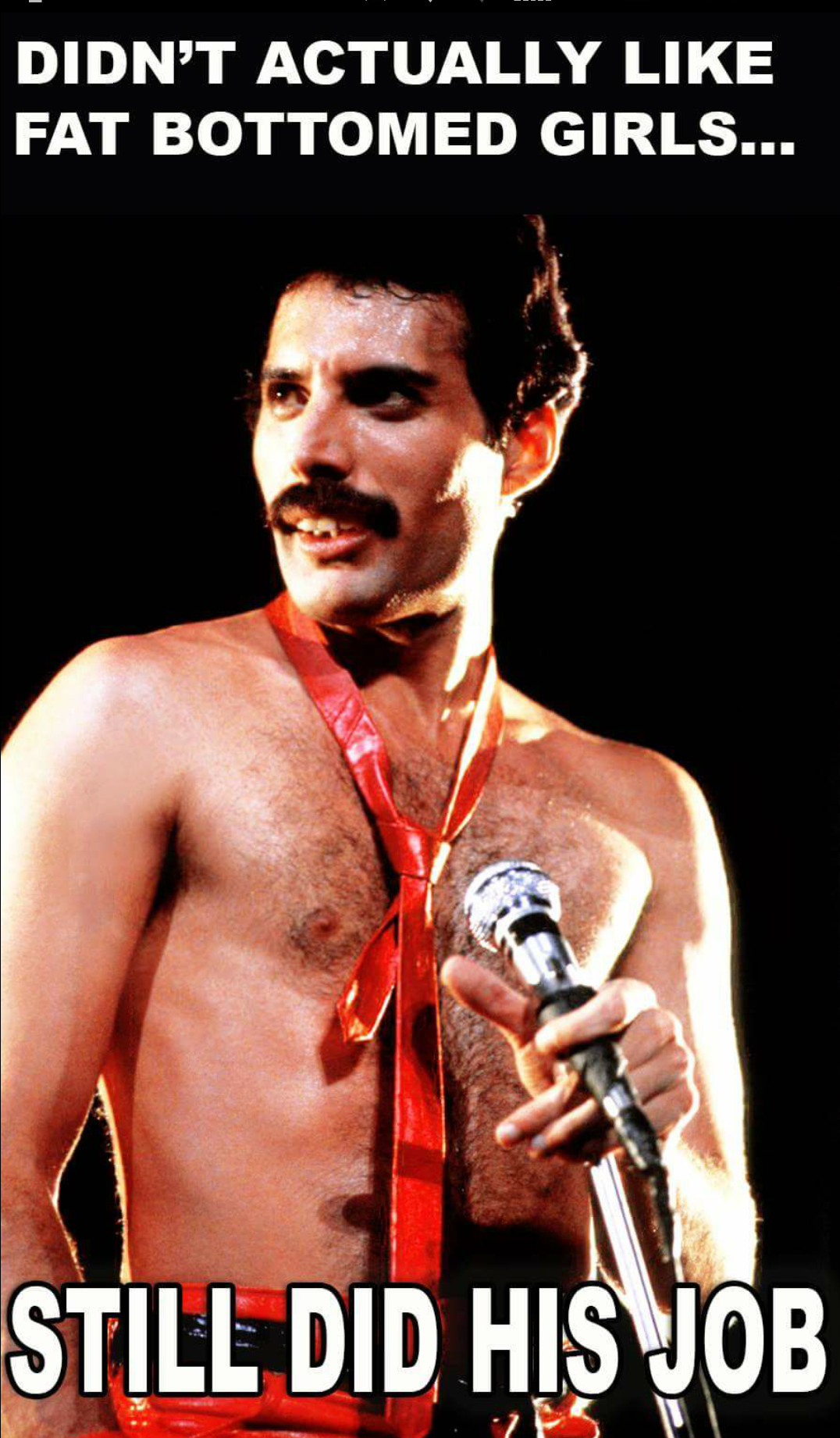 freddie mercury did not like fat bottomed girls - Google Search