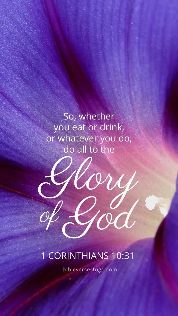Morning Glory 1 Cor 10 31