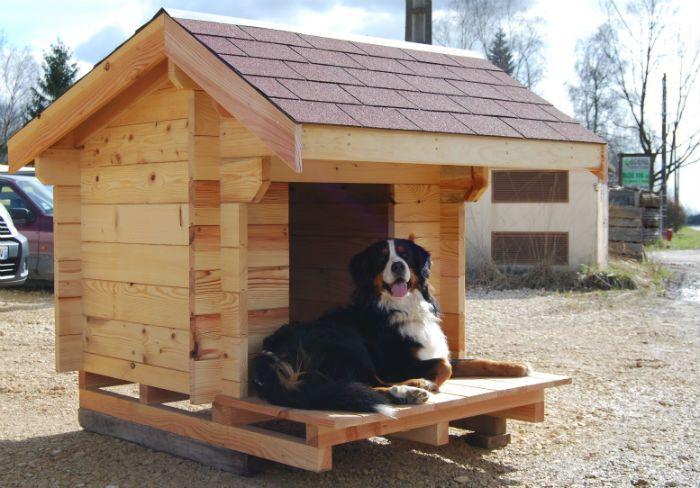 niche moyenne id es de bricolage pour animaux pinterest niche moyenne et niche de chien. Black Bedroom Furniture Sets. Home Design Ideas