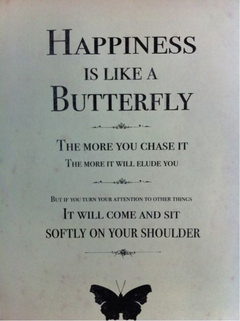 Happiness An Exercise In Self Repair Butterfly Quotes Words Quotes Inspirational Quotes