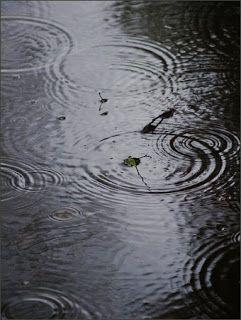 Olor a tierra mojada