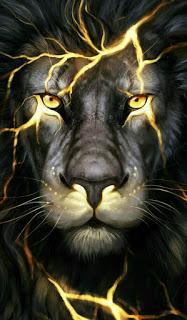 خلفيات شاشه كيوت الرئيسية روعه اولاد Lion Images Lion Live Wallpaper Lion Wallpaper Iphone