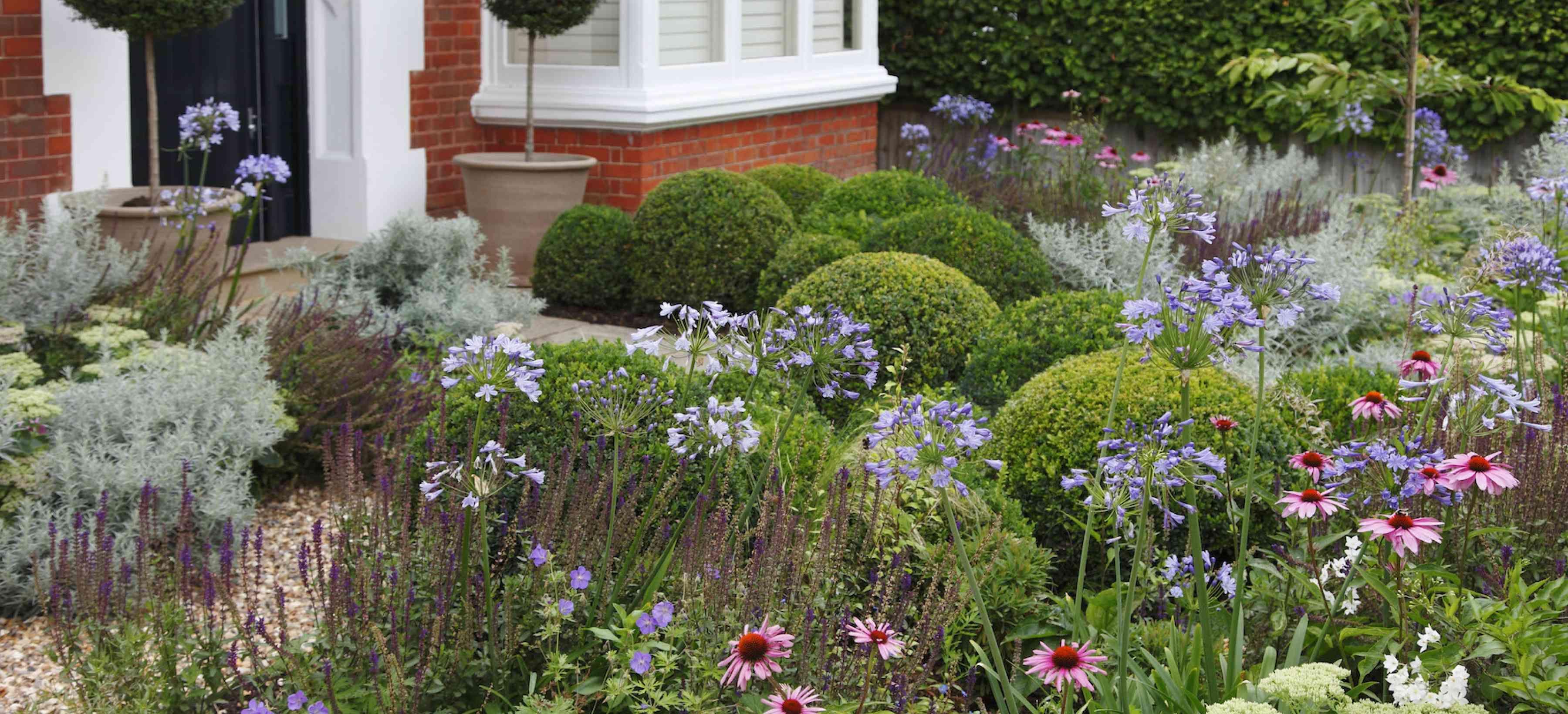 West Putney Flowering Front Garden - Belderbos | Front ...