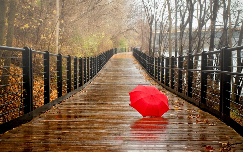 Saving For A Rainy Day Imagenes Hermosas Dia Lluvioso Dias De Lluvia