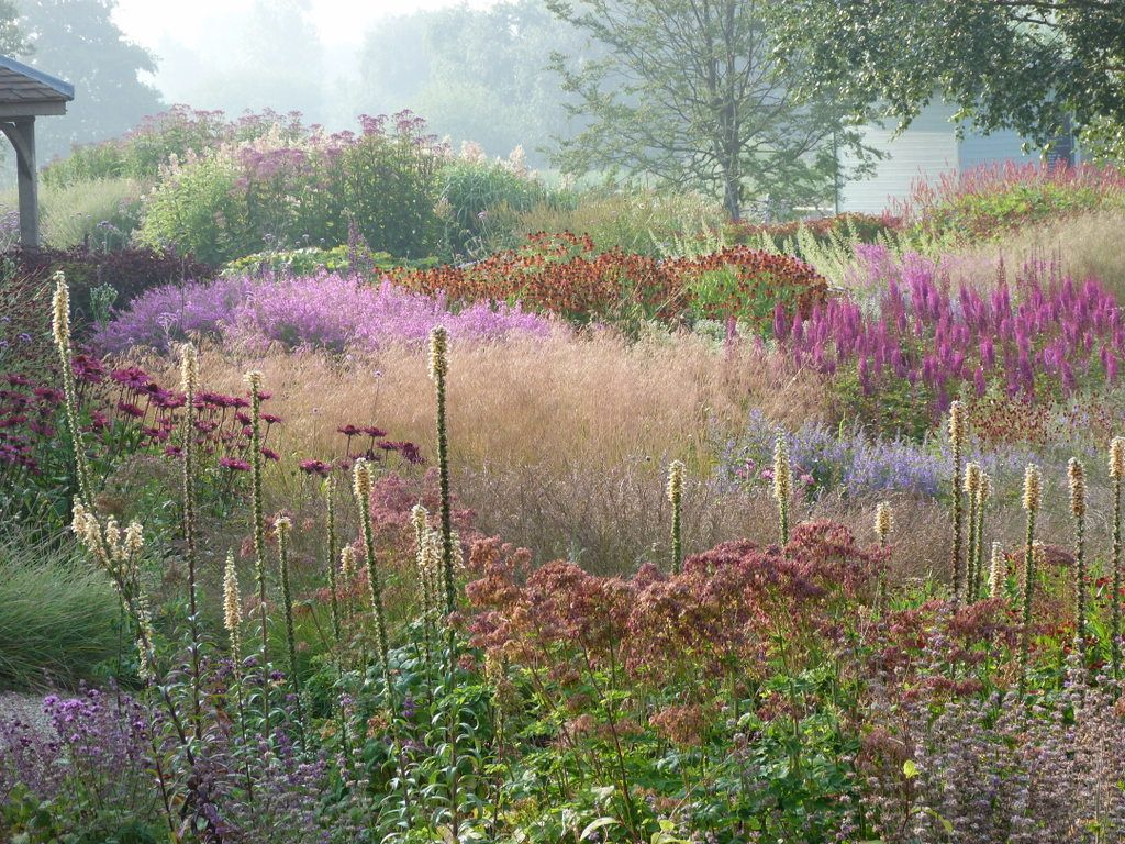 The millenium garden designed by piet oudolf has swathes for Grasses planting scheme