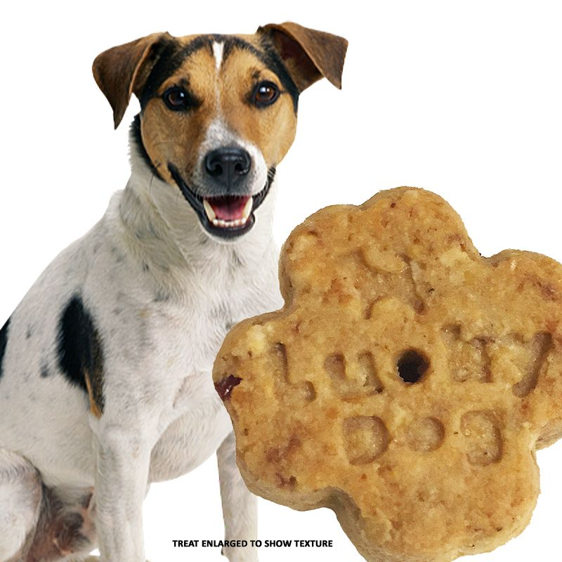 Lucky dog allnatural dog treats simple whole food