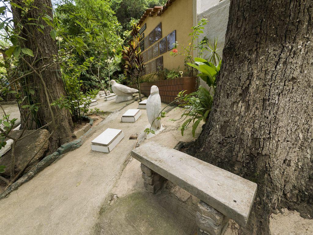https://flic.kr/p/TdDiy9 | Cemitério dos Pássaros | Na Ilha de Paquetá, bucólico bairro da cidade do Rio dentro da Baía de Guanabara.  Paquetá, Rio de Janeiro, Brasil. Tenha um belo dia! :-)  ___________________________________________  Birds Cemetery  At Paquetá Island, Bucolic neighborhood of the city of Rio inside  Guanabara Bay.  Rio de Janeiro, Brazil. Have a  great day! :-)  ___________________________________________  Buy my photos at / Compre minhas fotos na Getty Images  To direct…