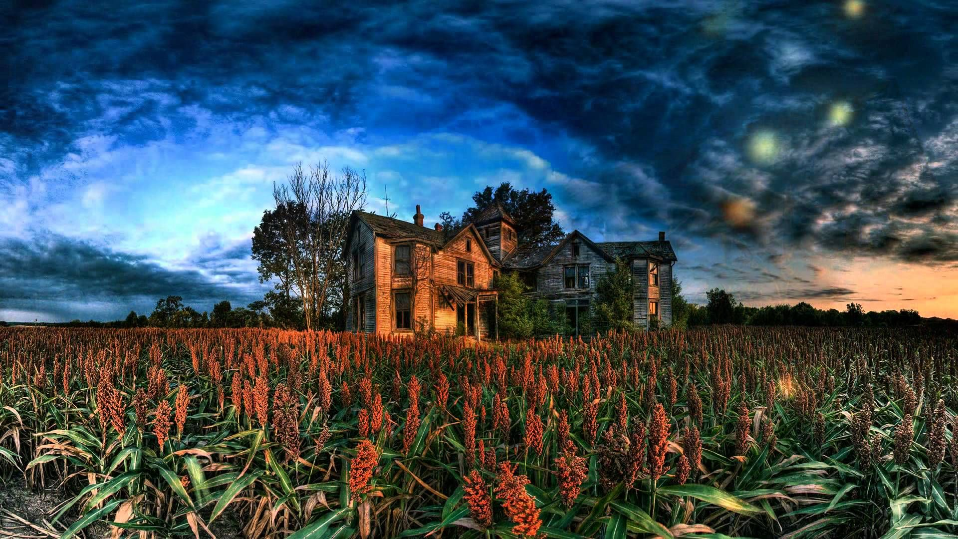 Abandoned farm houses image by Ruth Yaap on Japanese Music