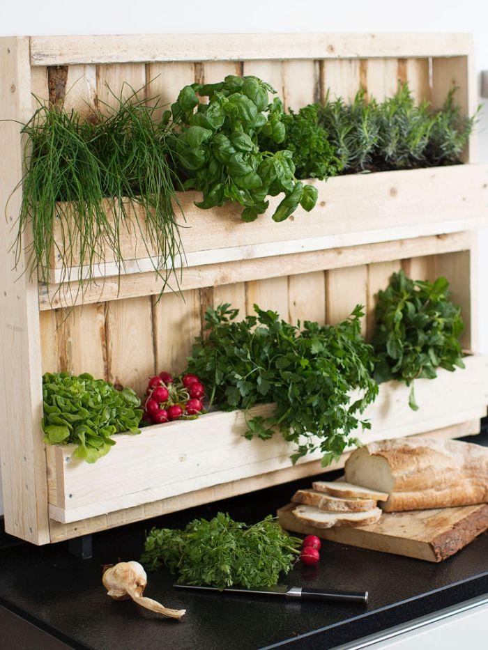 1001 + idées pour aménager un jardin ou potager vertical