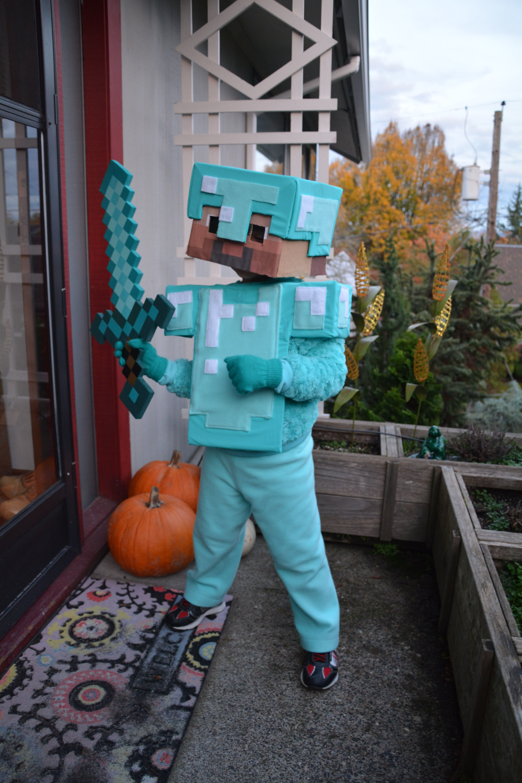Steve In Diamond Armor In 2019 Minecraft Costumes