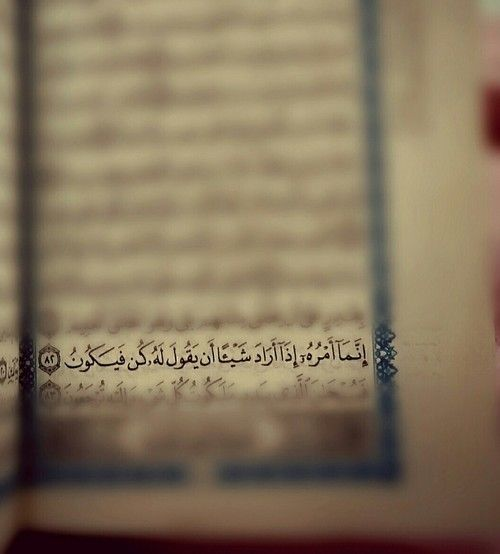 صور ايات قرانية عن قدرة الله تعالى Islamic Quotes Holy Quran Islam