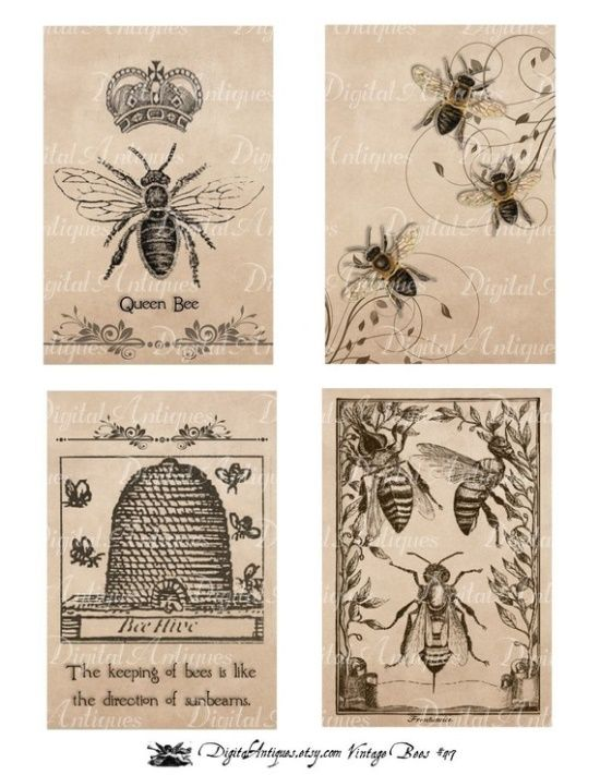 Autumn Cards Collage Sheet Scrapbook and Card Making Supplies Printed Bees and Hives Collage Sheet 8.5 x 11 Printed Sheet