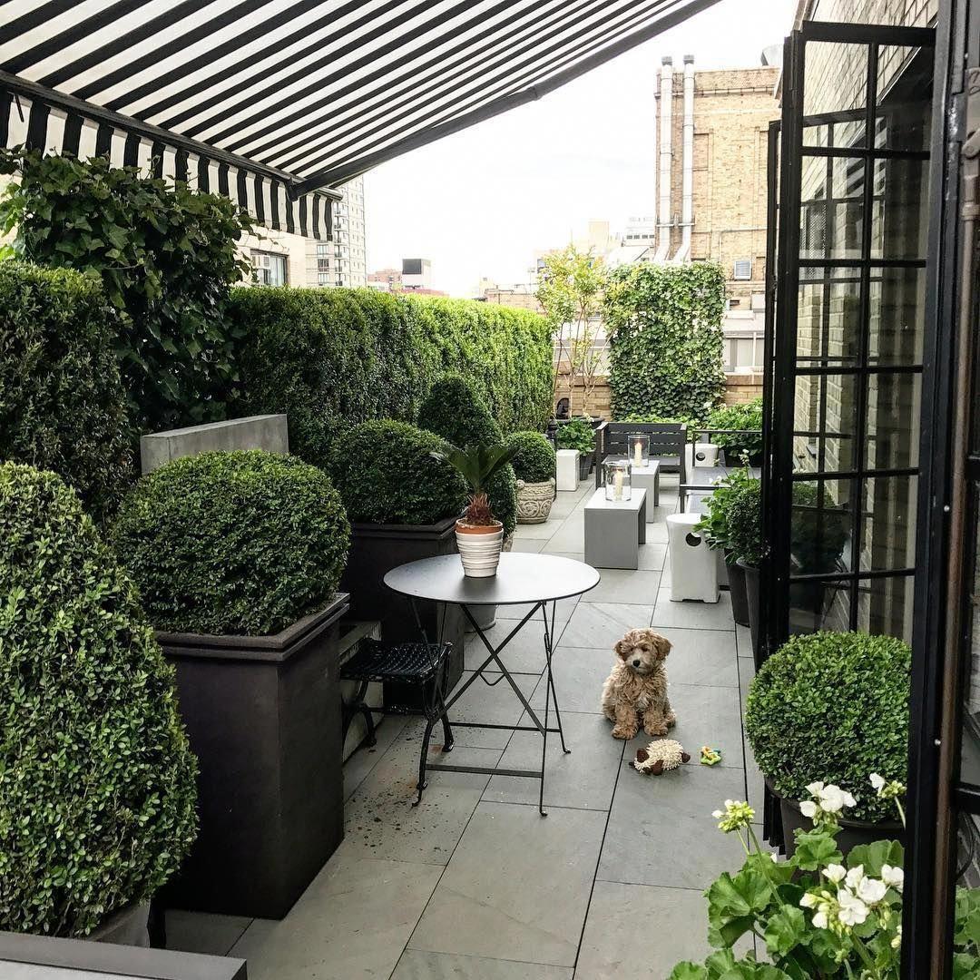 Condo Luxury In 2020 Patio Outdoor Outdoor Gardens