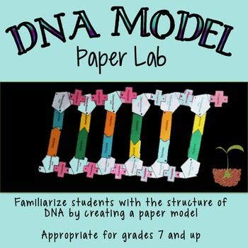 Dna structure lab paper model teacher students and activities dna structure dry lab is a cut n paste activity in which students build models malvernweather Images