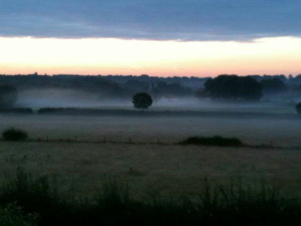 Dawn in the mist. Boorley Green, Hampshire
