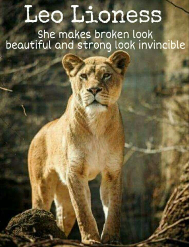 Every time Lioness, Leo, Leo zodiac quotes