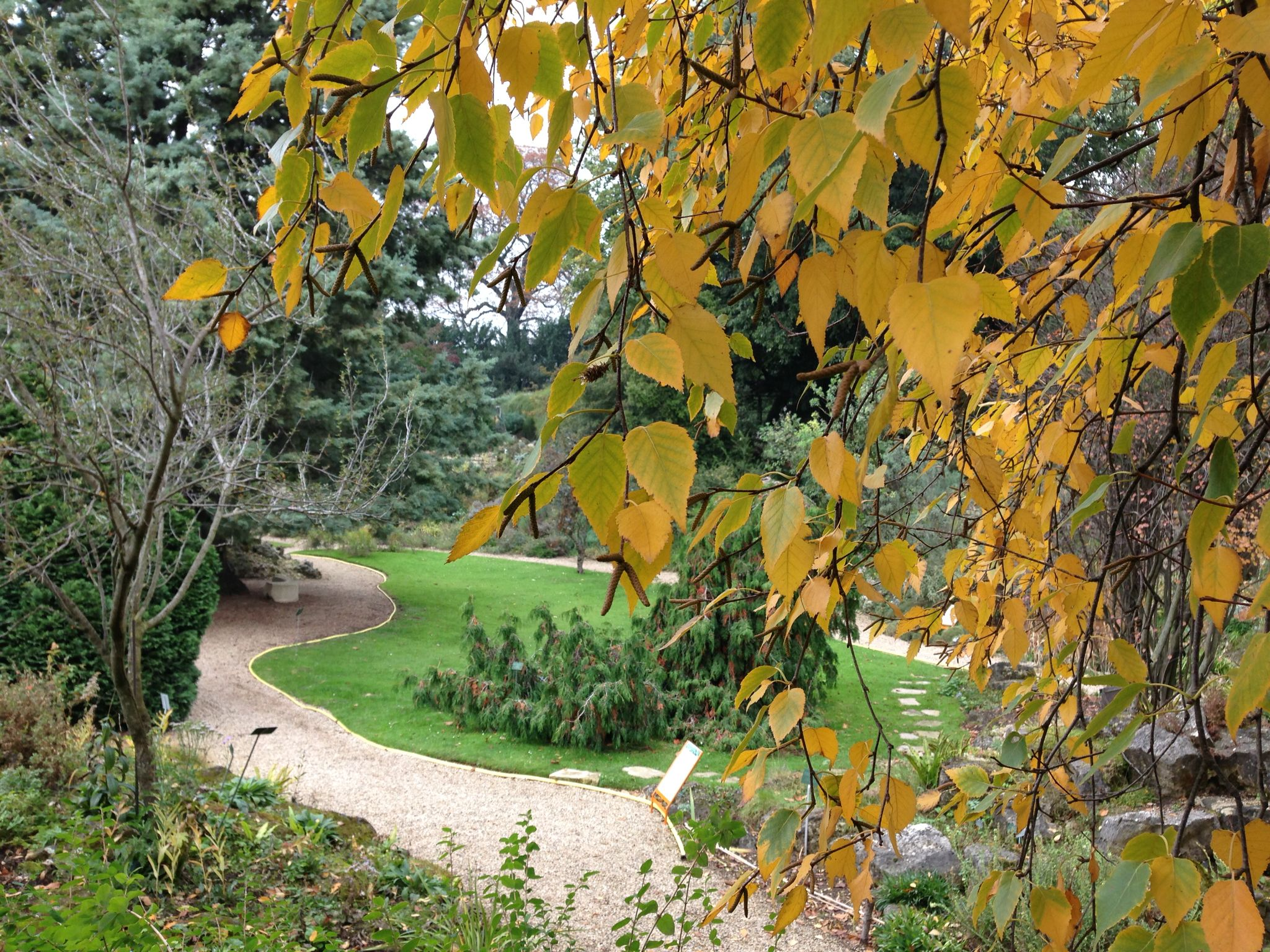 Jardin Alpin Paris Fr