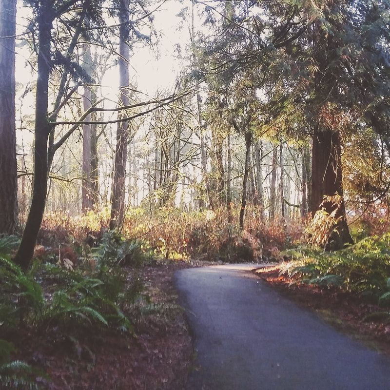 nelson nature park things to do near seattle seattle washington rh pinterest com things to do near seattle fall things to do near seattle center