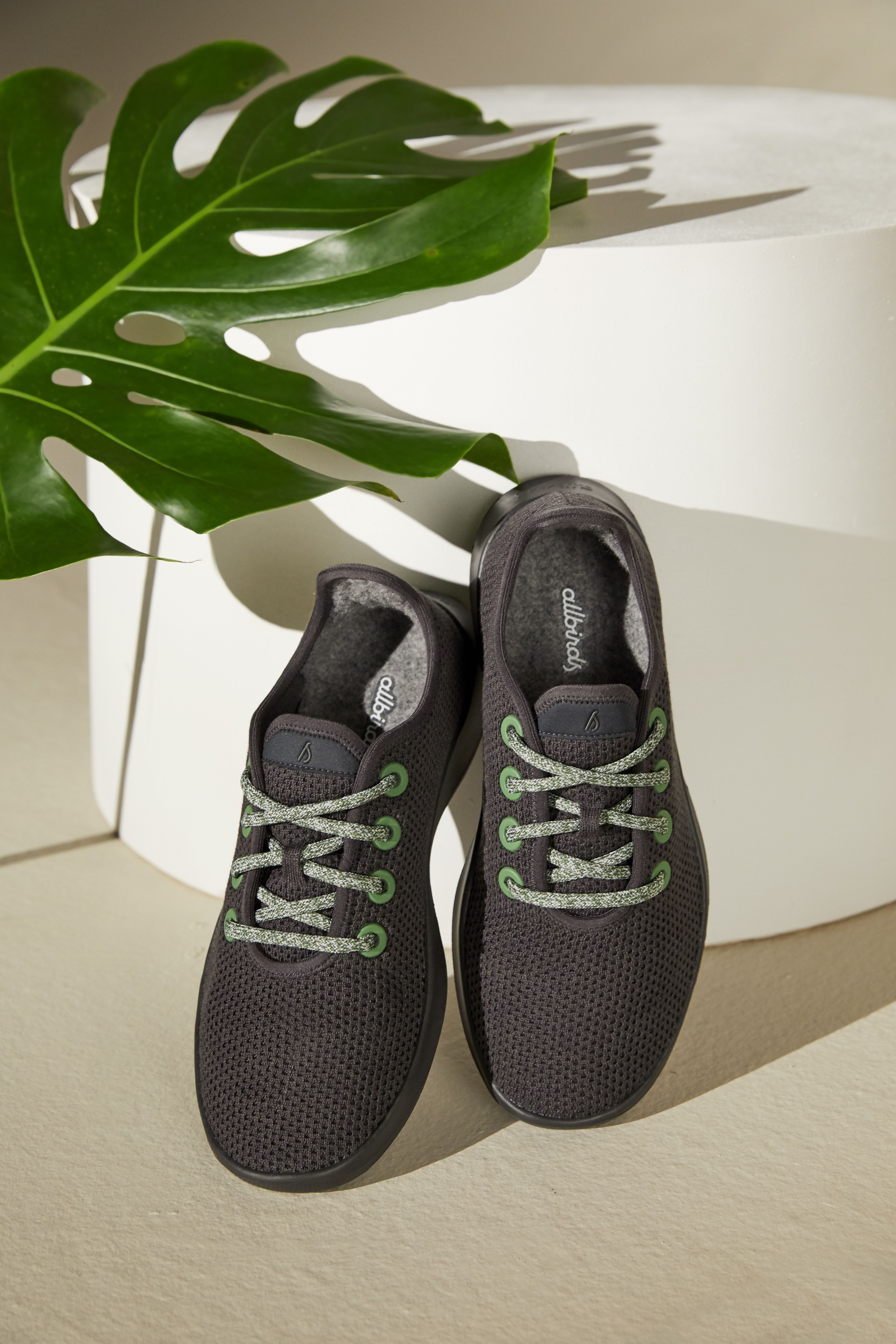 New Allbirds Sneakers Are Here Thanks