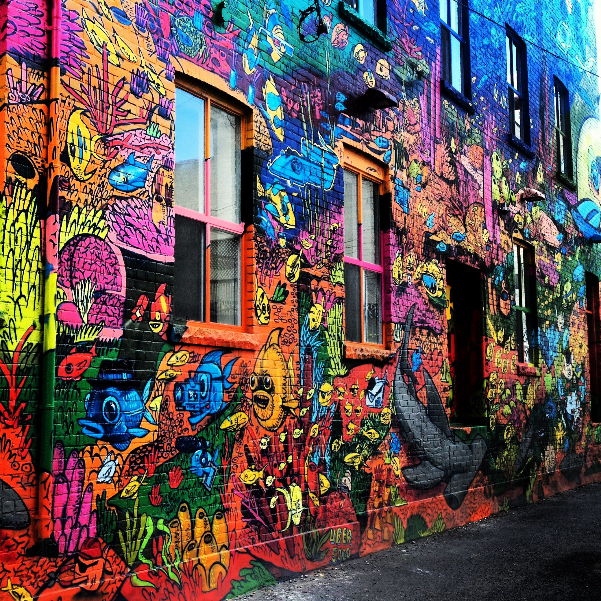Colorful Peace Graffiti Google Search Pictures