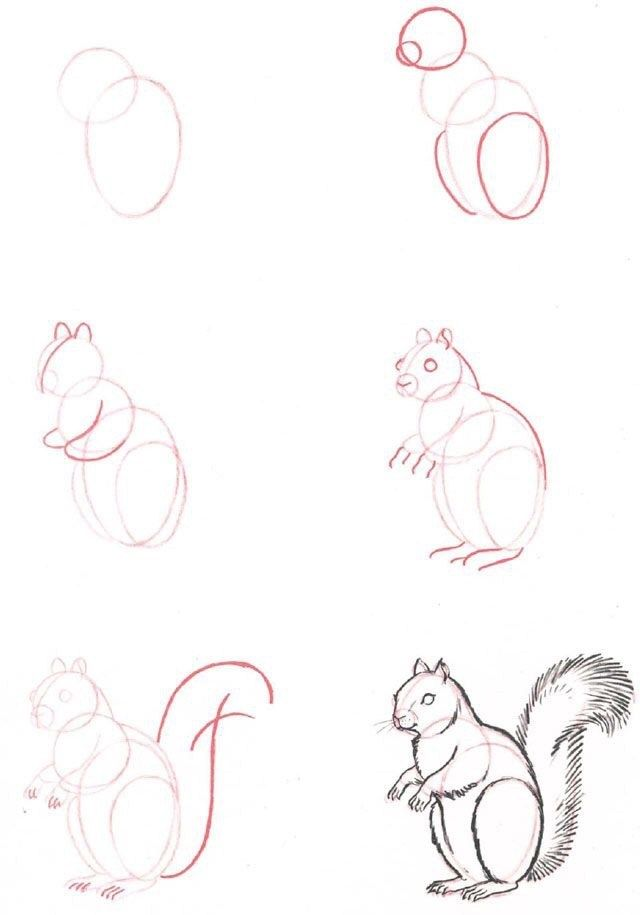 40 Free Easy Animal Sketch Drawing Information Ideas Drawing Sketches Drawing Tutorial Animal Sketches