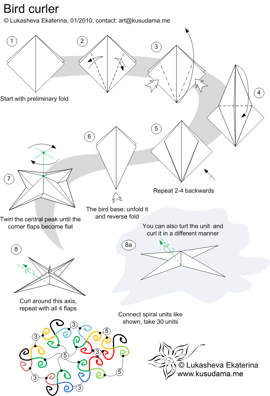 bird curler diagram