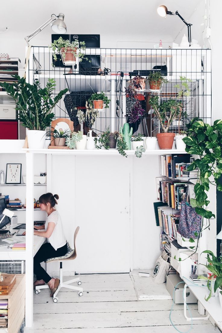 the studio- plants all over | the plant, all. and the studio, Garten und Bauten