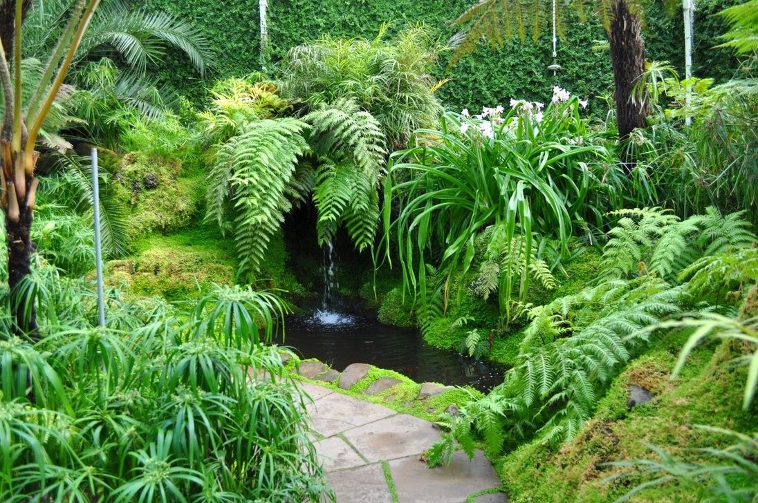outdoor fernery