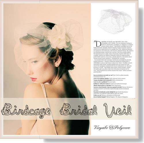 Bridal Headpiece For Older Brides (Vintage Birdcage Veils