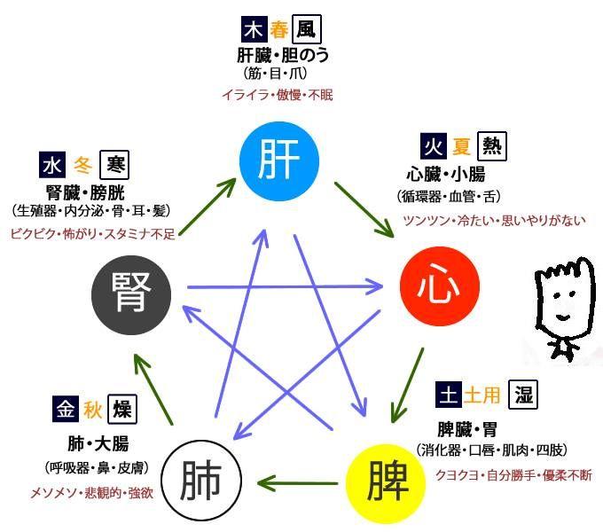 五行図とは 冷えとり温ちゃんの温活ナビ 公式 温活 経絡 陰陽 五行