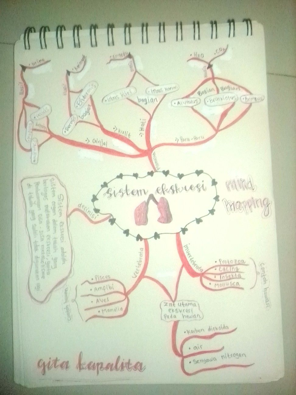 Mind Map Ipa : Sistem, Ekskresi, Bullet, Journal