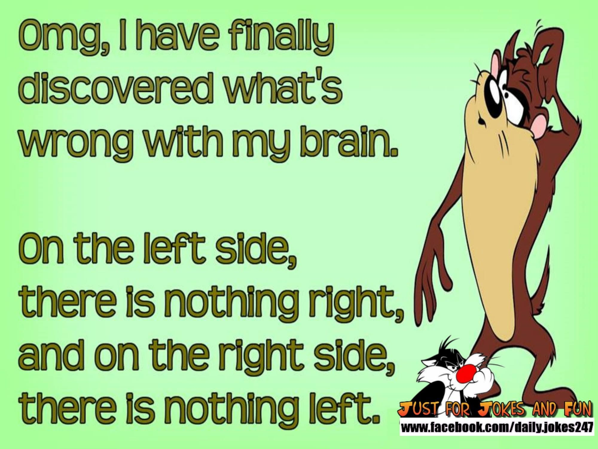 Fun quotes funny image by Kay Kerr on Life Looney tunes