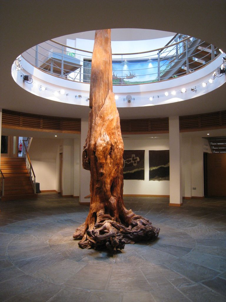4,000-year-old pine tree excavated from the Ceide Fields in north Co Mayo, Ireland. The most extensive Stone Age farmed landscape in the world is hidden beneath the wild bogs near Ballycastle. This tree is the centrepiece of the Ceide Fields visitors centre. Scientists have coated it in beeswax to preserve it. Run your hands over it and travel back 4,000 years.