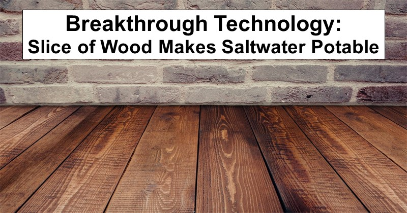 Breakthrough Technology Slice Of Wood Makes Saltwater Potable Rethinksurvival Com Water Purification Survival Saltwater