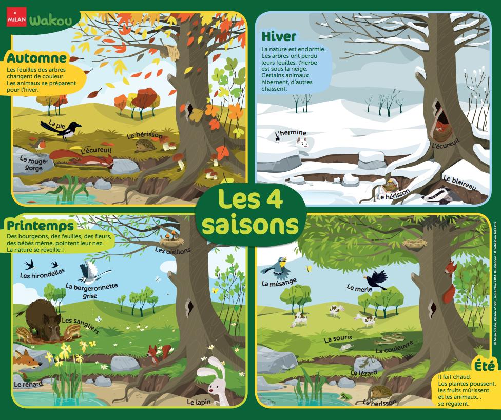 77a9abce2341 Poster Les 4 saisons