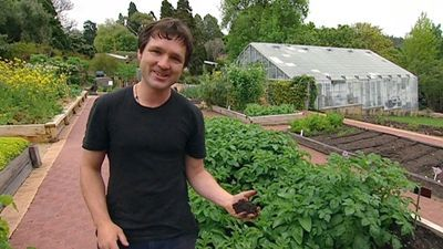 Australia - How To: Making Perfect Vegie Soil