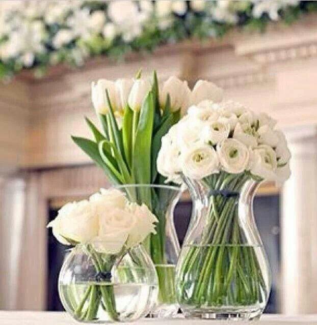 Flores Blancas Photo Paisajes Pinterest Flowers Flower