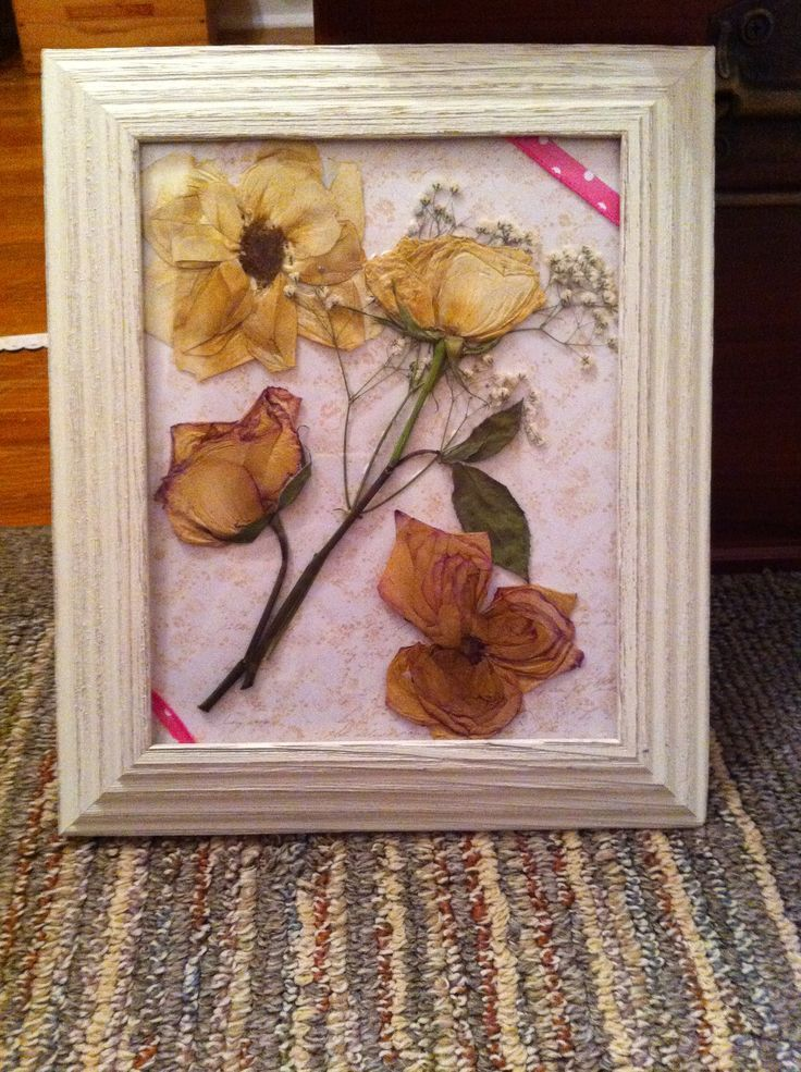 Framed Pressed Dried Flowers DIY dried flowers and frame