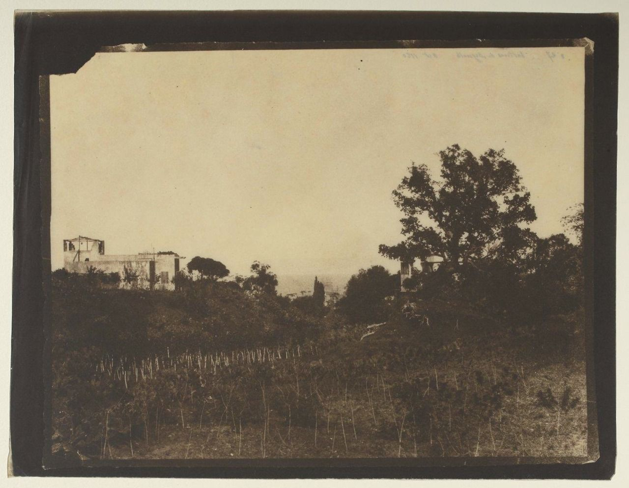 Beirut 1860 Source Bibliotheque Nationale De France Old  # Bibliotheque Saraya