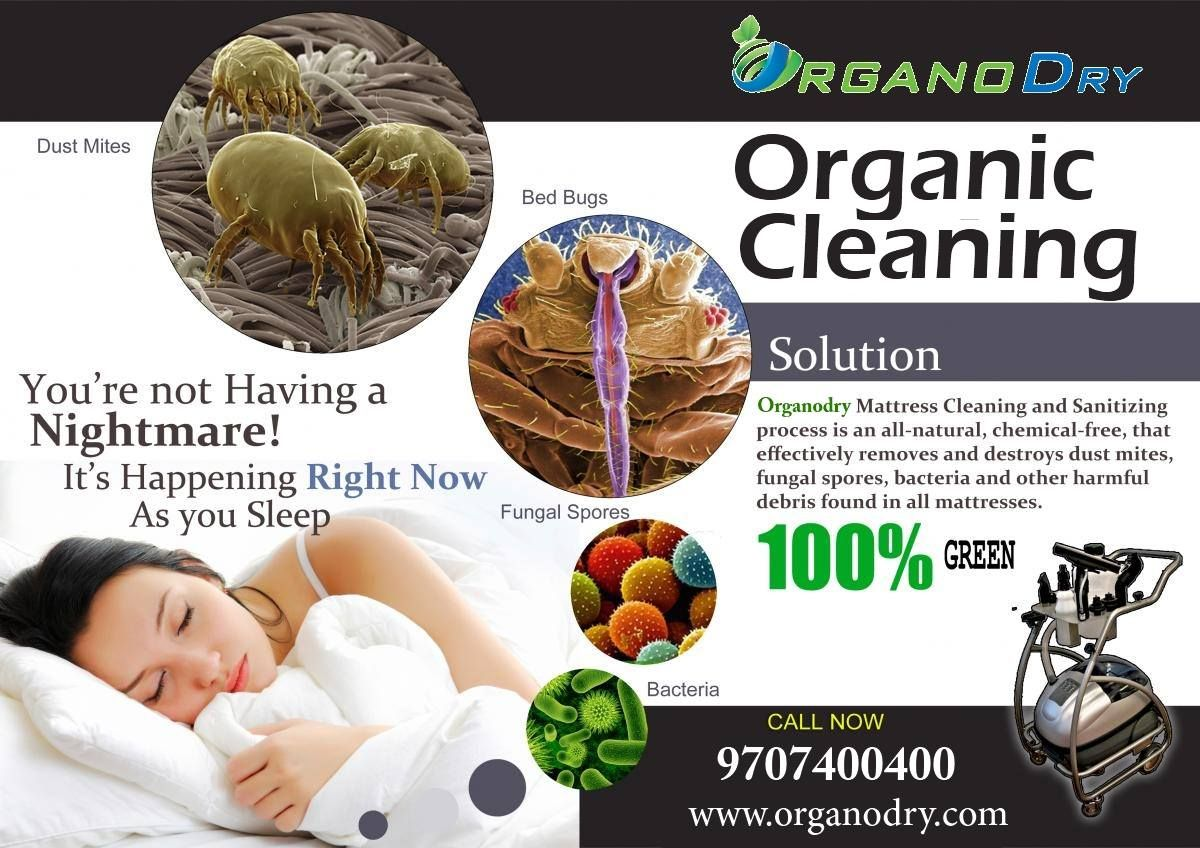 organic mattress cleaning service in delhi ncr for booking