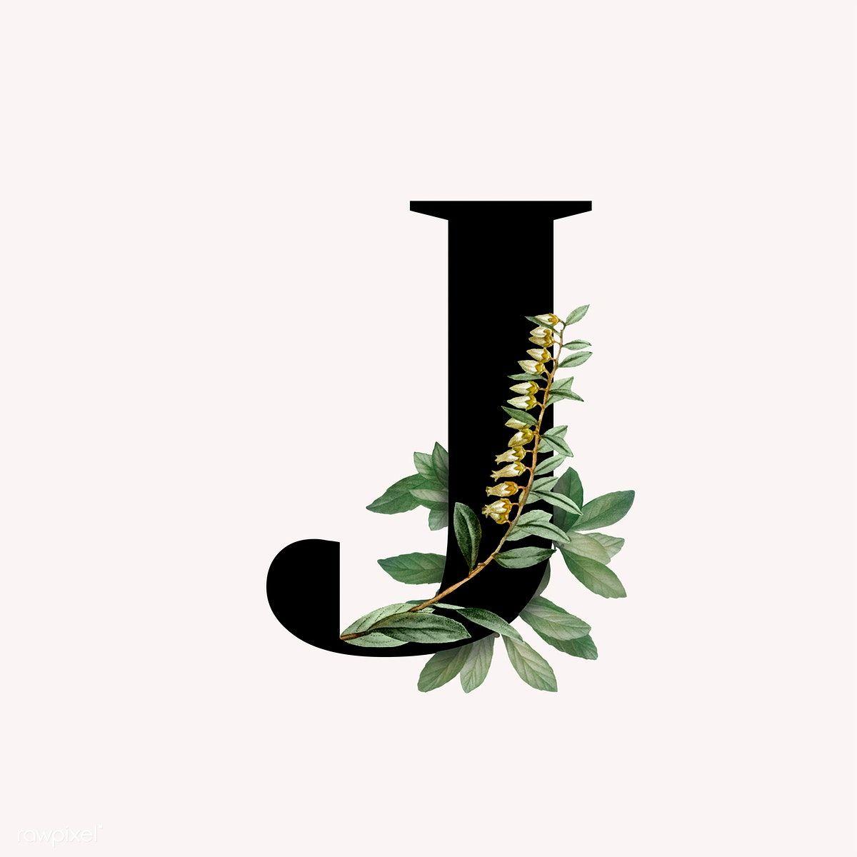 Download premium vector of Botanical capital letter J ...