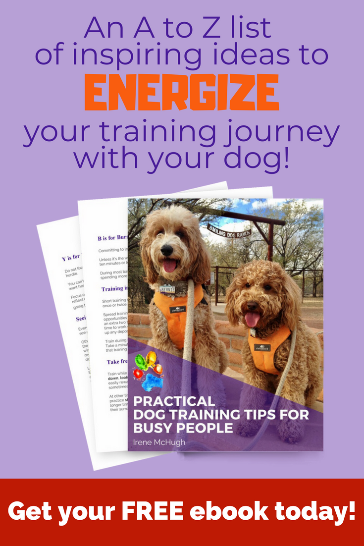Do You Want To Spend More Time Training Your Dog But You Re Not Sure Where To Find That Time Read Our Free 45 Page E Therapy Dogs Puppy Training Dog Training
