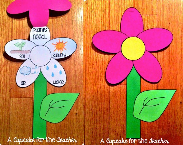 ms de ideas increbles sobre huertos escolares en pinterest artesanas de jardn para nios aula al aire libre y jardn de la lectura