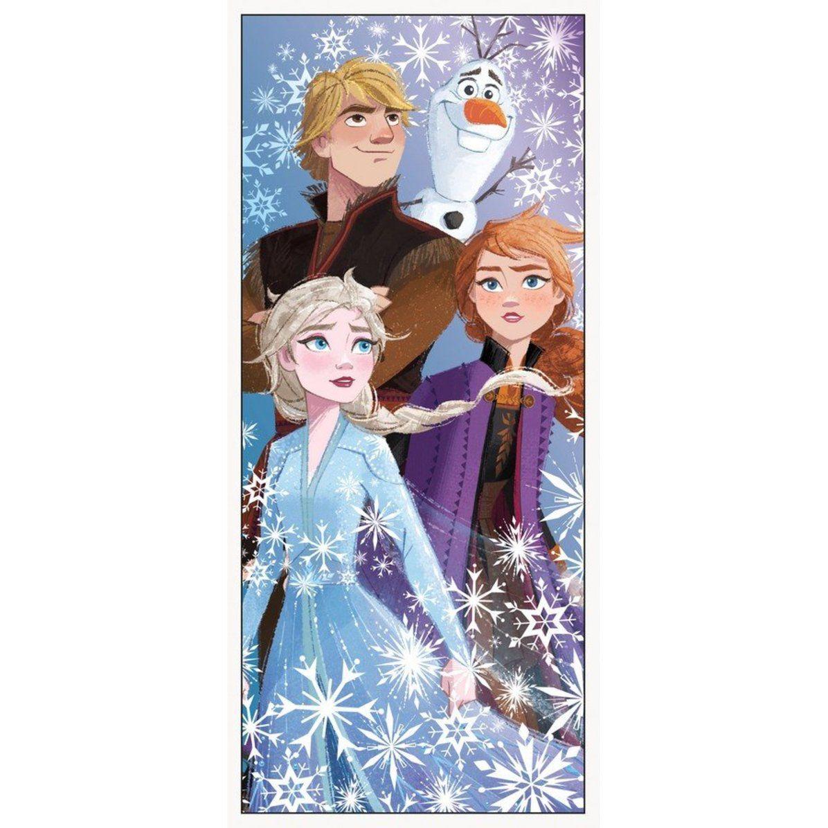 """Frozen 2 Door Poster 27""""X 60"""" in 2020 Frozen party"""
