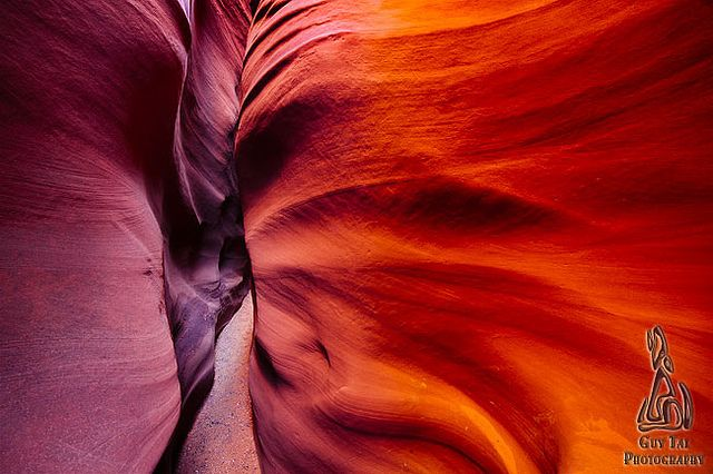 Sandstone Petals by Guy.Tal, via Flickr