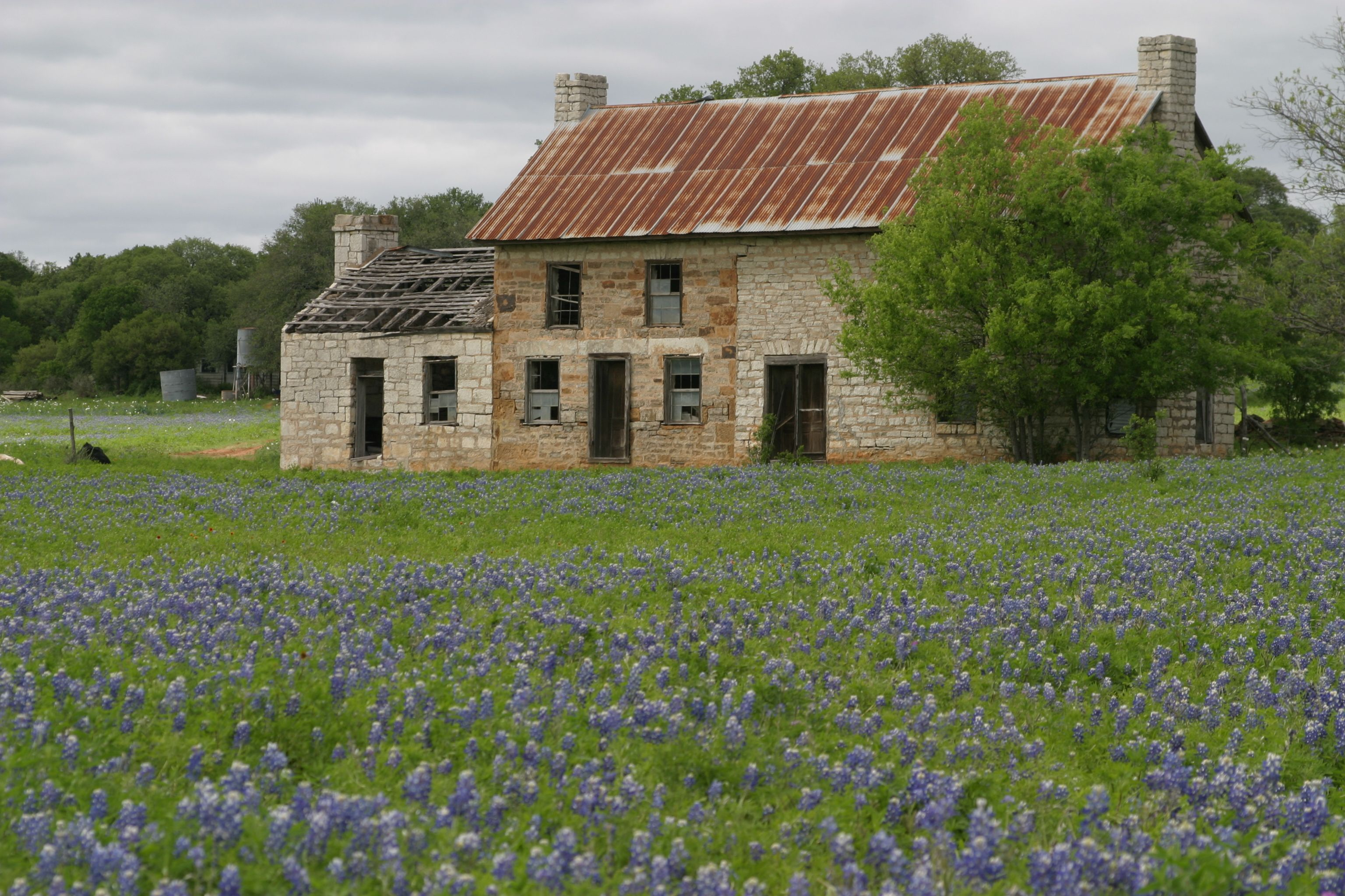 """The somewhat infamous """"Bluebonnet House"""" on Hwy 281 near Marble Falls, TX."""